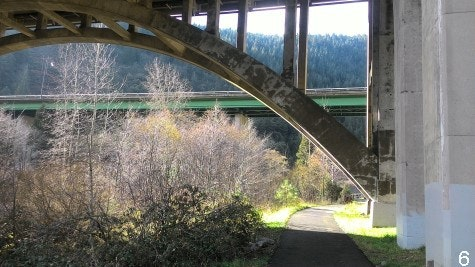 Tauhindauli Park footbath under freeway bridges and local bridge in background with trees and mountains in background.