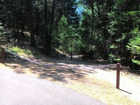 Entrance to trail to Amphitheater.