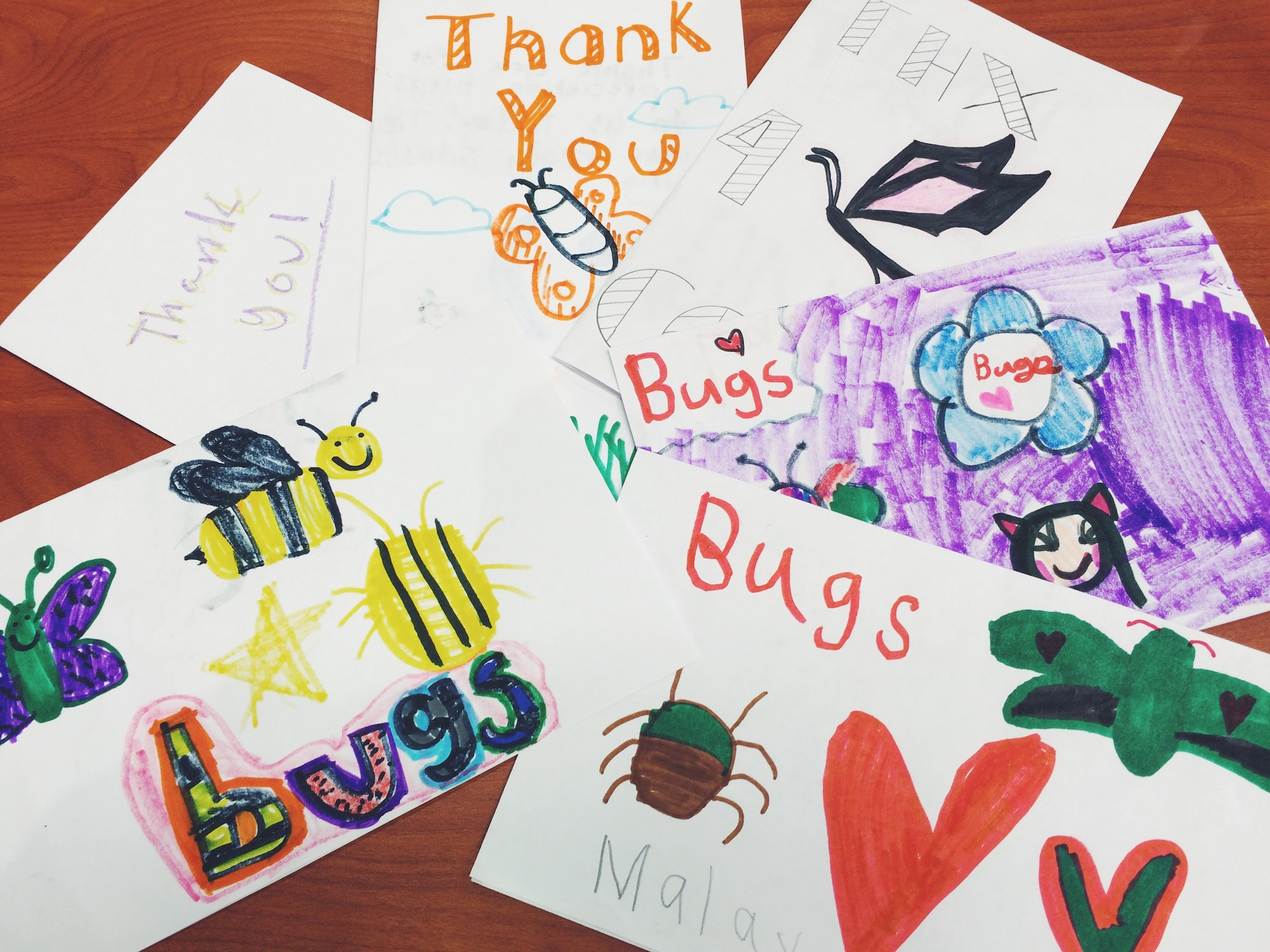 Student Thank You Cards