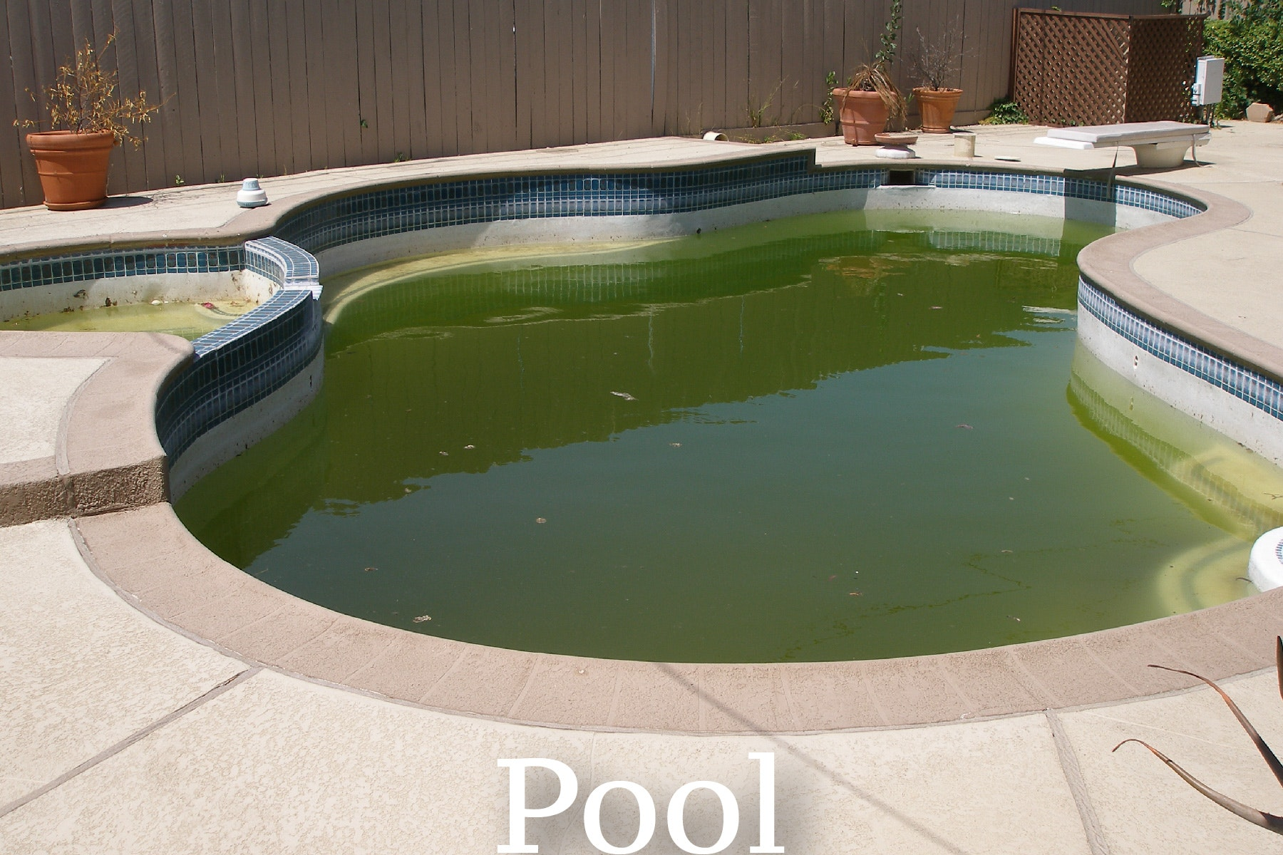May contain: water, pool, outdoors, yard, nature, hot tub, tub, and jacuzzi