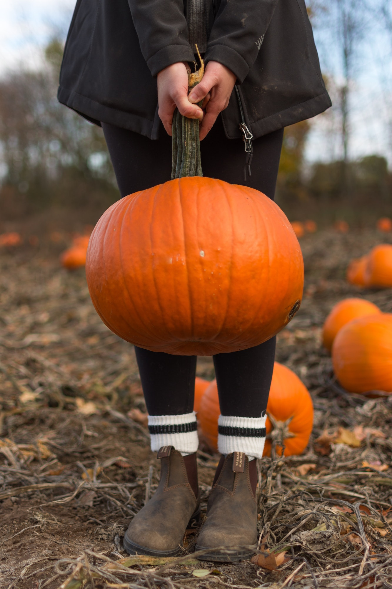 May contain: pumpkin, food, plant, vegetable, shoe, clothing, apparel, footwear, human, and person