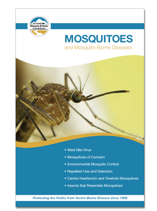 May contain: poster, advertisement, animal, invertebrate, insect, and mosquito
